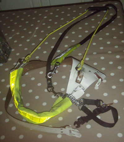 Traditional guide dog harness design